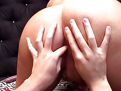 Blowjob, Facial, Handjob, Brunette